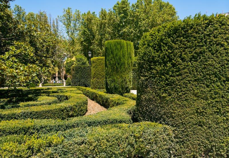 Download Königliche Gärten In Madrid Stockfoto - Bild von hecke, beschaffenheit: 26371294