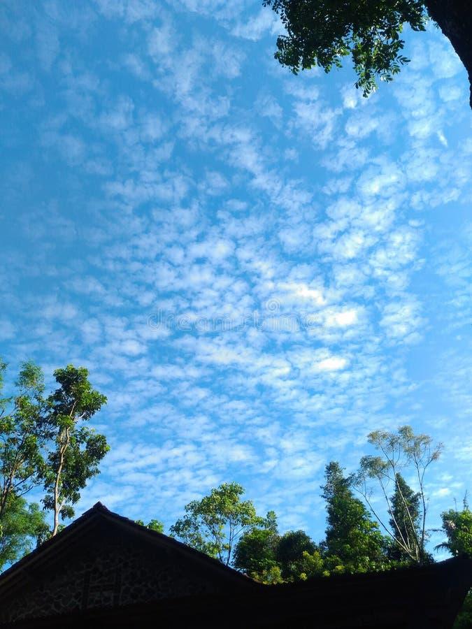 Könnte und blauer Himmel lizenzfreie stockfotos