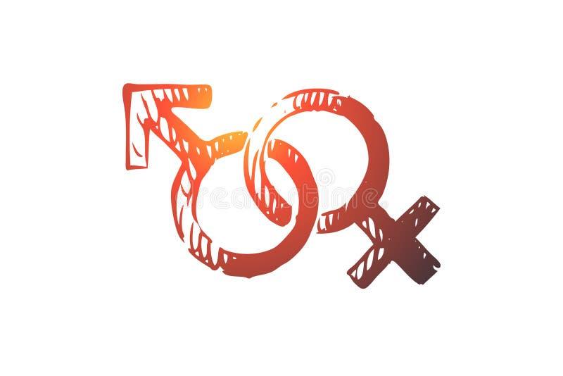 Könsbestämma manligt, kvinnlign, symbolet, genusbegrepp Hand dragen isolerad vektor stock illustrationer