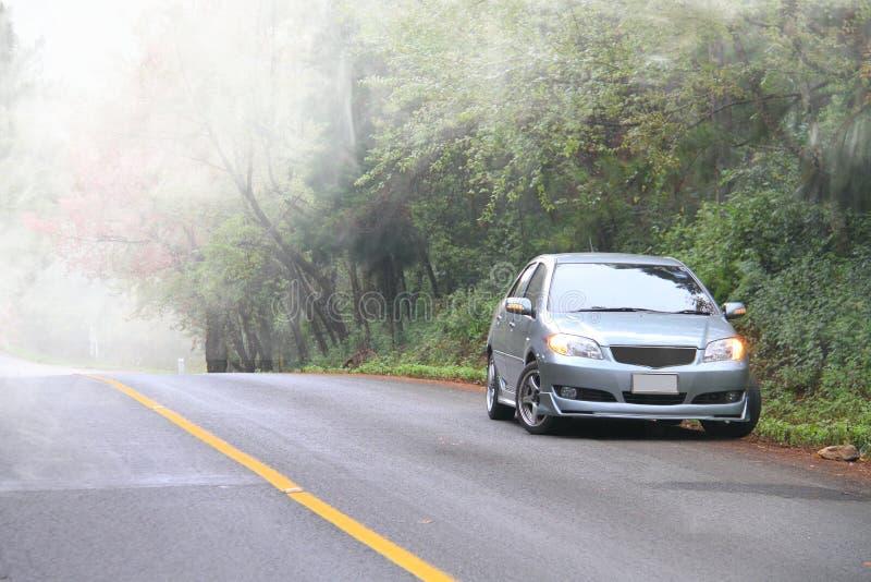 Kör bilen i skog med misten fotografering för bildbyråer