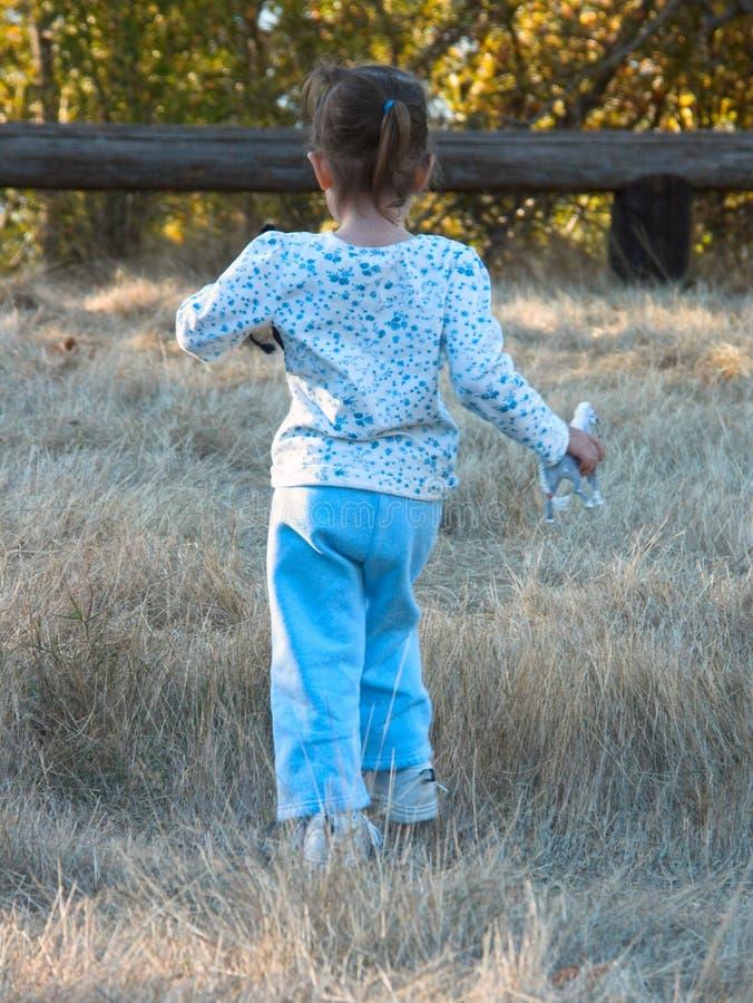 Download Köra för hästar fotografering för bildbyråer. Bild av ungar - 275653