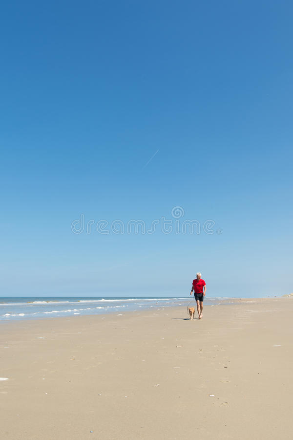 Köra med hunden på stranden royaltyfria foton