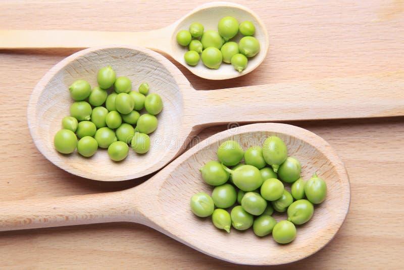 Körner der grünen Bohnen stockbild