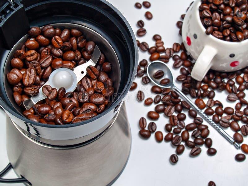 Körner des Kaffees in einer elektrischen Kaffeemühle, zerstreute Körner stockfotografie