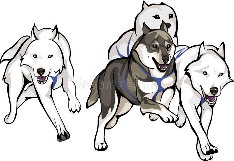 Körning för slädehundkapplöpning vektor illustrationer