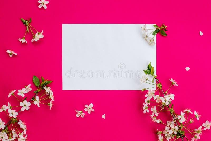 Körsbärblommor och ett vitt ark av papper royaltyfria bilder