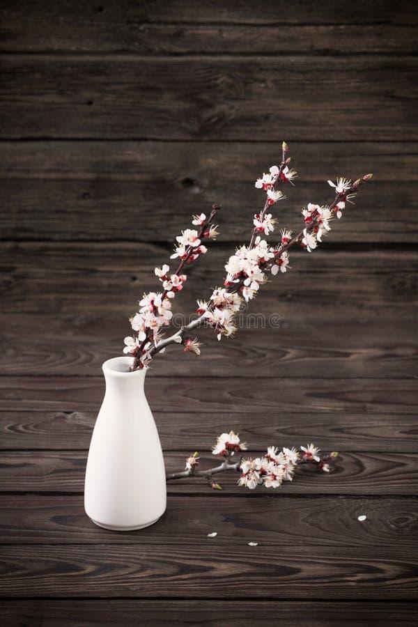 Körsbärsblommor i vase på träbakgrund royaltyfri bild