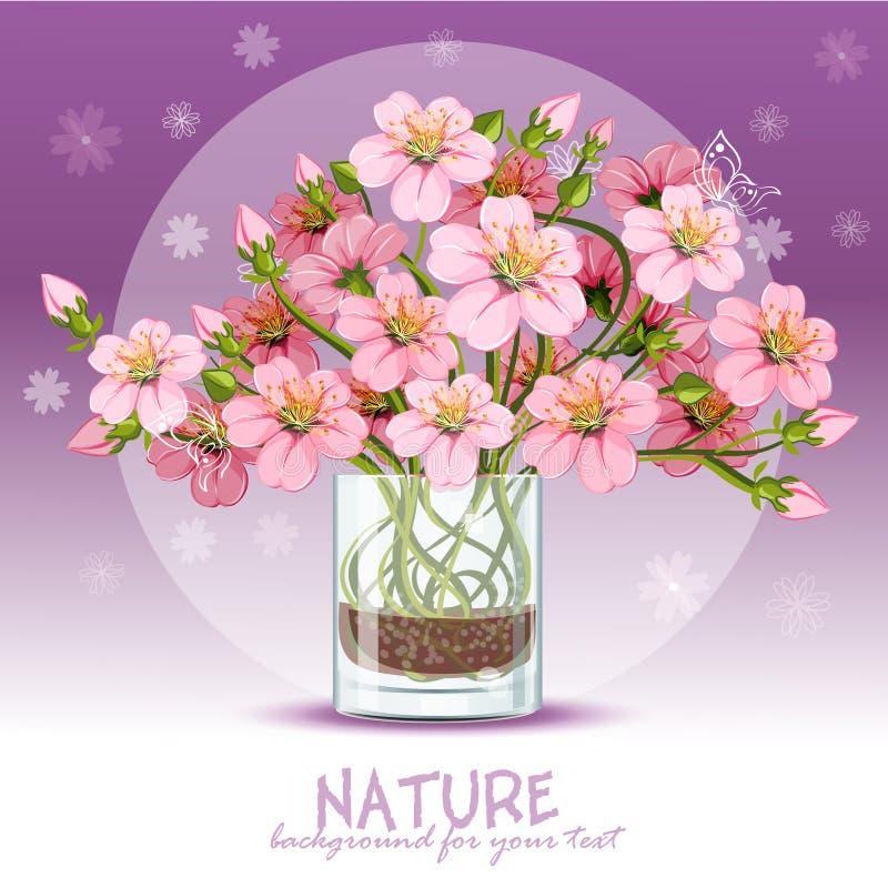 Körsbärsröd blomning i ett exponeringsglas vektor illustrationer
