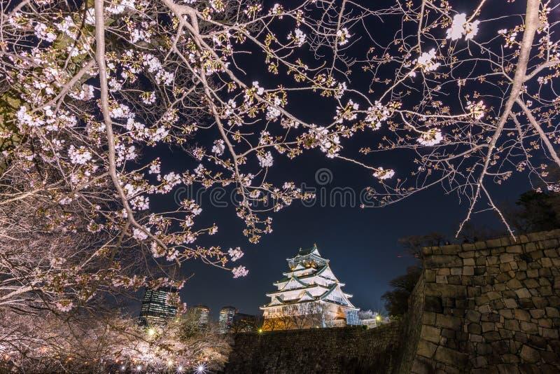 Körsbärsröd blomning och Osaka slott på natten, Osaka, Japan arkivbilder