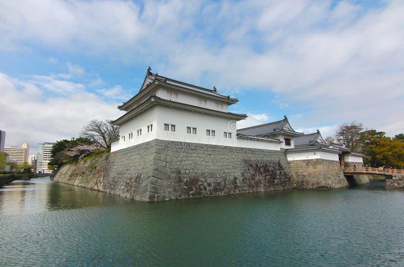 KÖRSBÄRSRÖD BLOMNING PÅ SUMPU-SLOTTEN I den SHIZUOKA STADEN, Japan royaltyfria foton