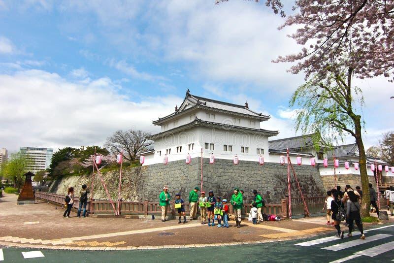 KÖRSBÄRSRÖD BLOMNING PÅ SUMPU-SLOTTEN I den SHIZUOKA STADEN, Japan arkivfoton