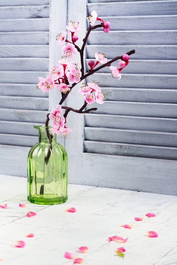 Körsbärsröd blomning Rosa blommor av sakura Vår eller mammadagbegrepp royaltyfria foton