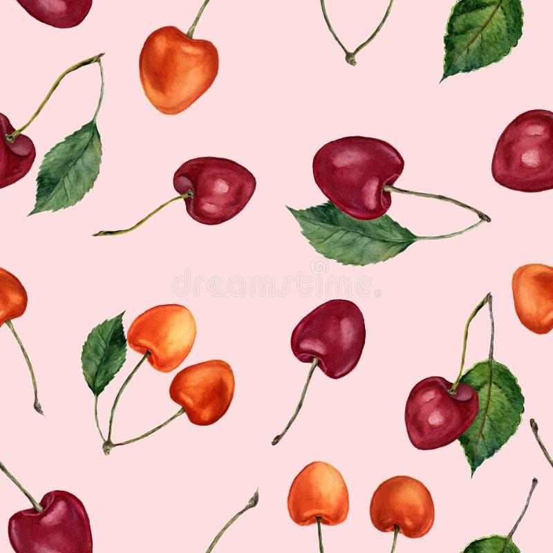 Körsbärsröd sömlös modell för vattenfärg Vattenfärgkörsbär som isoleras på rosa bakgrund För design, textil och bakgrund stock illustrationer
