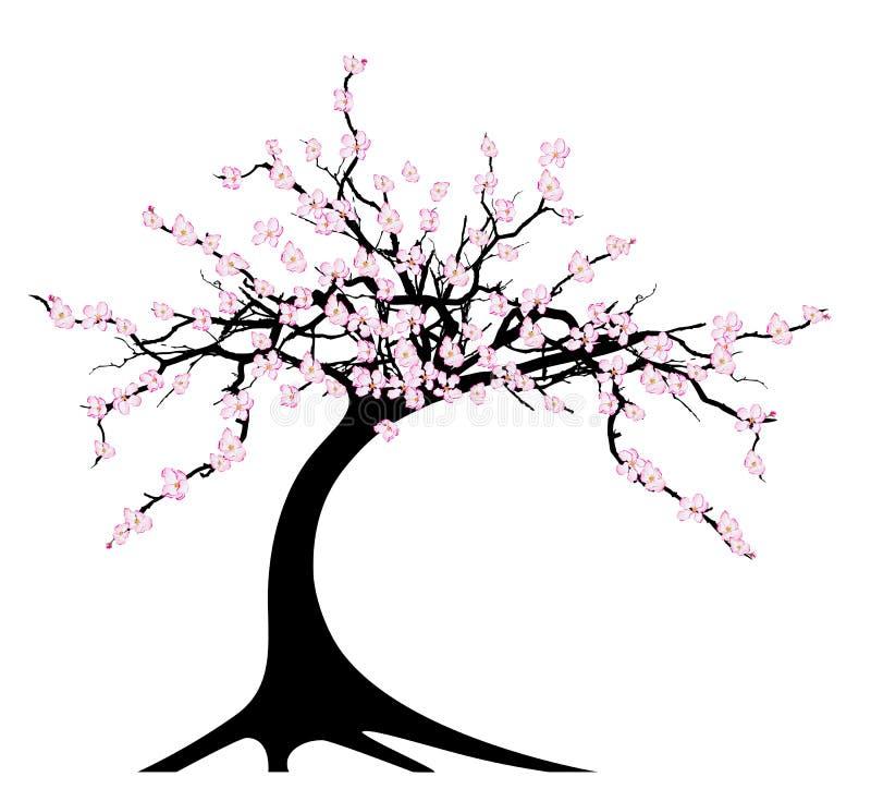 Körsbärsröd tree royaltyfri illustrationer