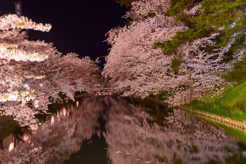 Körsbärsröda blomningar och Hirosaki parkerar arkivfoto