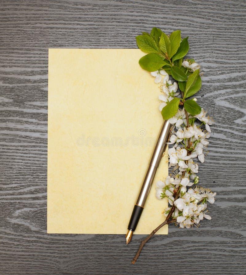 Körsbärsröda blomningar och papper fotografering för bildbyråer