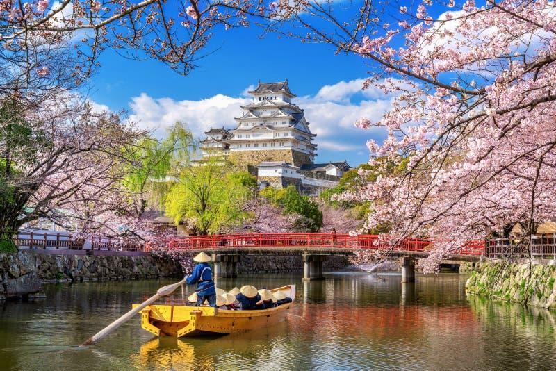 Körsbärsröda blomningar och slott i Himeji, Japan arkivfoto