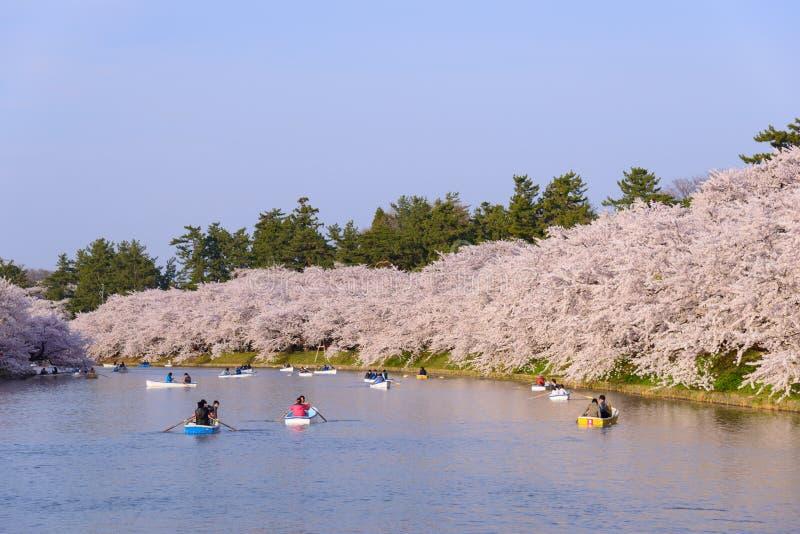 Körsbärsröda blomningar på Hirosaki parkerar arkivbilder