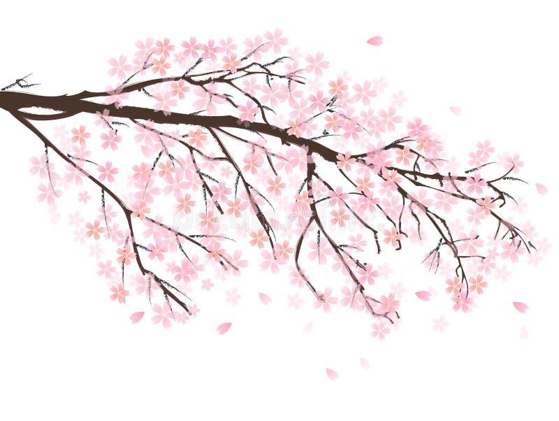 Download Körsbärsrött träd vektor illustrationer. Illustration av tree - 37345008