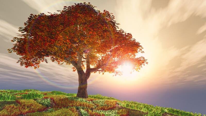 Körsbärsrött träd för höst på kullen mot solen vektor illustrationer