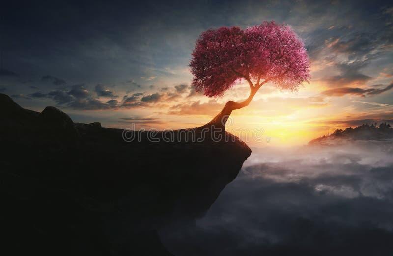 Körsbärsrött träd på berget arkivfoto