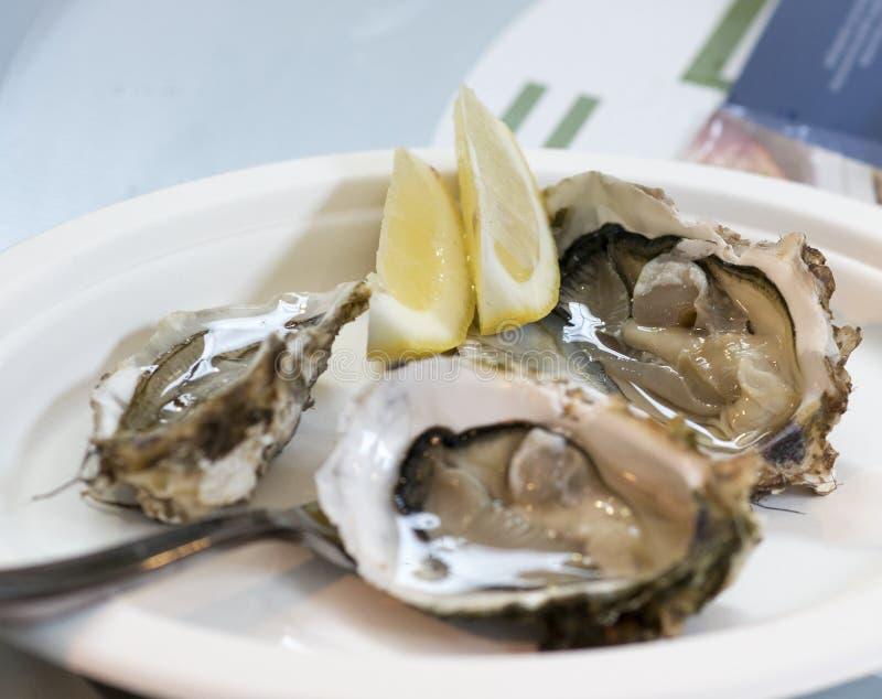 Köstliche Austern am Markt lizenzfreies stockbild