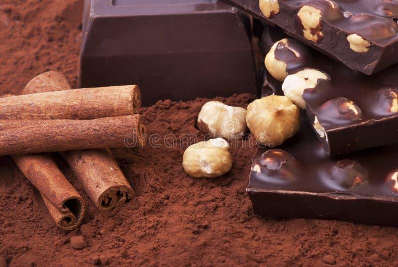 Köstliche dunkle Schokolade mit Haselnüssen stockbild