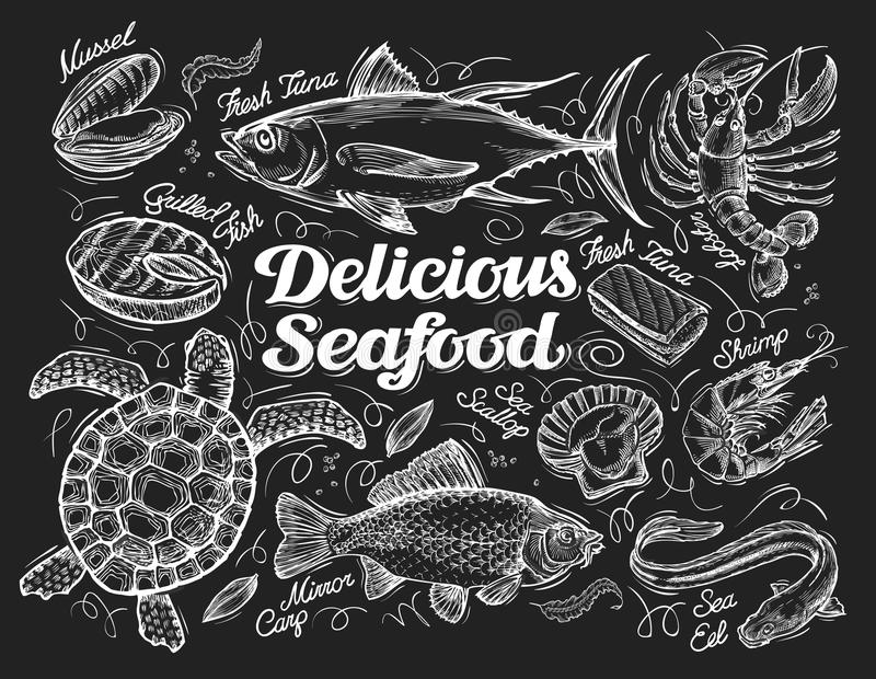 Köstliche essbare Meerestiere Übergeben Sie gezogene Skizze eines Fisches, Thunfisch, Hummer, Garnele, Kamm-Muschel, Aal, Karpfen vektor abbildung