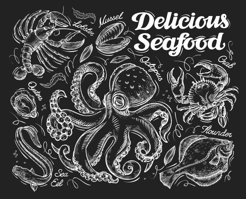 Köstliche essbare Meerestiere Übergeben Sie gezogene Skizzenkrake, Krabbe, Fisch, Scholle, Aal, Auster, Miesmuschel, Hummer Auch  vektor abbildung