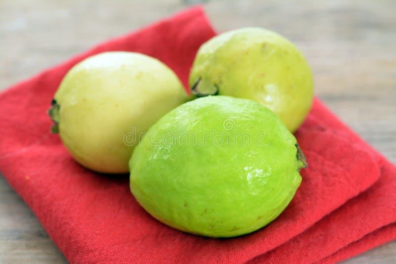 Köstliche Guave stockfotografie