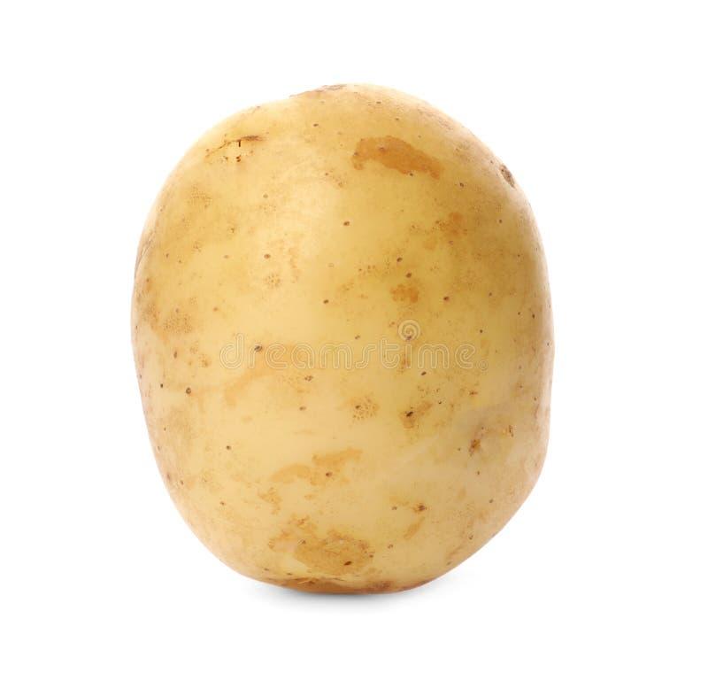 Köstliche junge rohe Kartoffel lokalisiert lizenzfreie stockbilder
