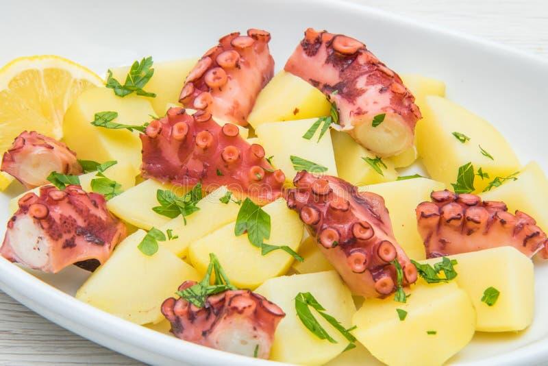 Köstliche Platte des Krakensalats mit Kartoffeln lizenzfreie stockfotos