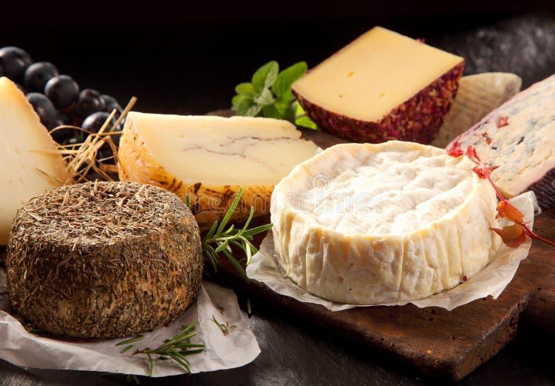 Köstliche Reihe feinschmeckerischer Käse auf einer Servierplatte stockfotografie