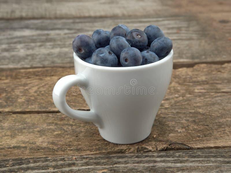 Köstliche saftige reife Blaubeeren Auf unterschiedlichem Hintergrund lizenzfreies stockbild