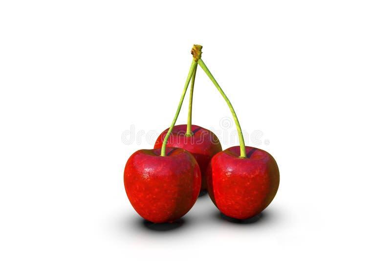 Köstliche schauende rote Kirschfrüchte auf weißem, Makro lizenzfreie abbildung