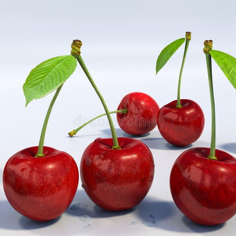 Köstliche schauende rote Kirschgruppe, ausführliches Makro stock abbildung