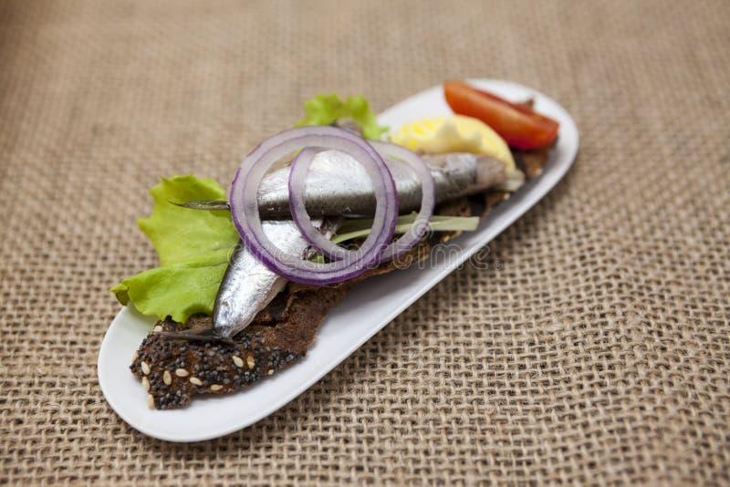 Köstliche spanische Tapas mit der Butter- und Zwiebelsalatsprotte, atlantisch auf Scheibenstangenbrot Ein ausgezeichneter Hinterg lizenzfreies stockbild