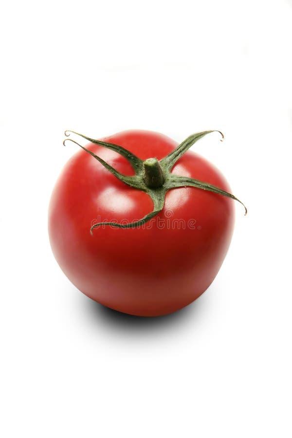 Köstliche Tomate lizenzfreie stockfotografie