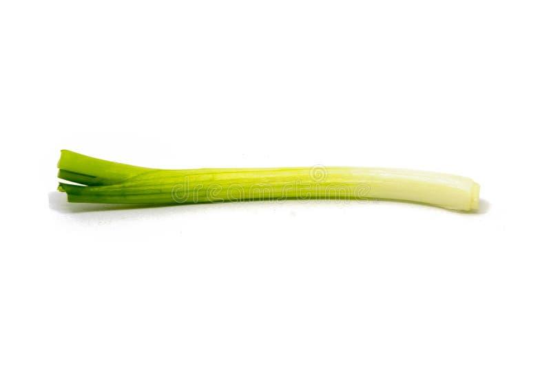 Köstliche und frische Frühlingszwiebel für essen und kochend von der Natur lizenzfreie stockfotografie