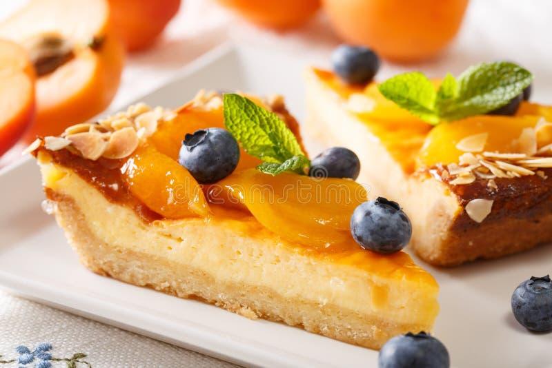 Köstlicher Käsekuchen mit Aprikosen, Blaubeeren und Mandeln clos lizenzfreies stockfoto