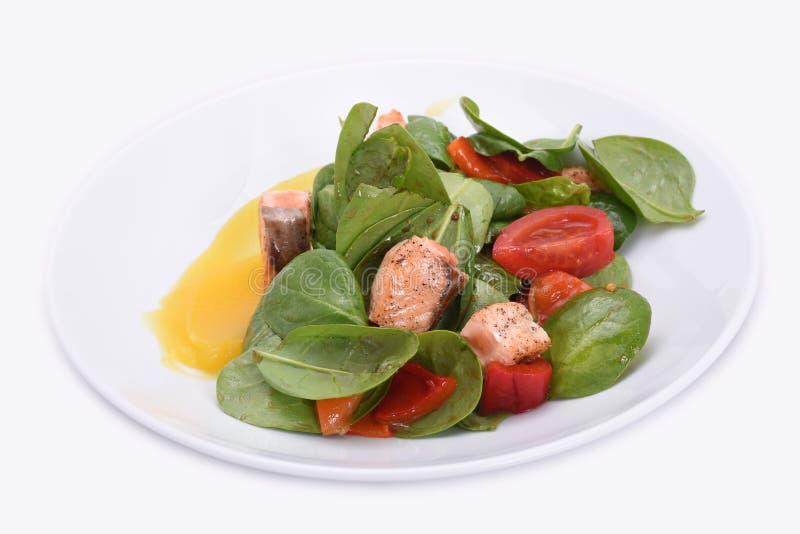 Köstlicher und gesunder Salat - rote Fische und Grüns lizenzfreie stockbilder