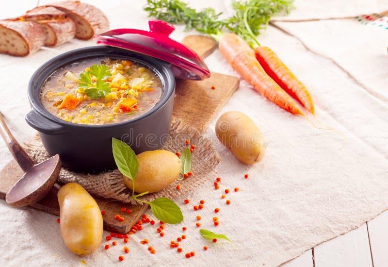 Köstliches starkes Gemüseeintopfgericht oder Suppe lizenzfreies stockfoto