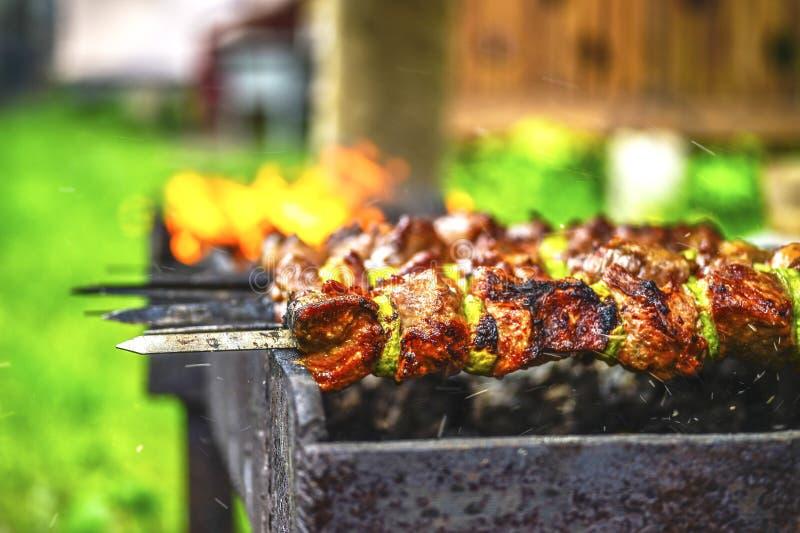 Kött på en steknål som lagas mat över en öppen brand En vindkast av vind blåser gnistorna och askaen royaltyfria bilder