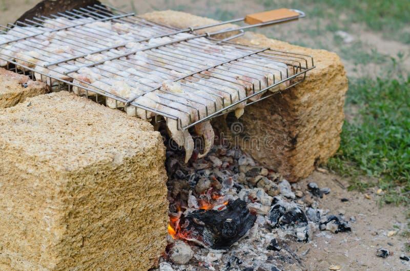 Kött som lagar mat över en grillfest royaltyfri foto