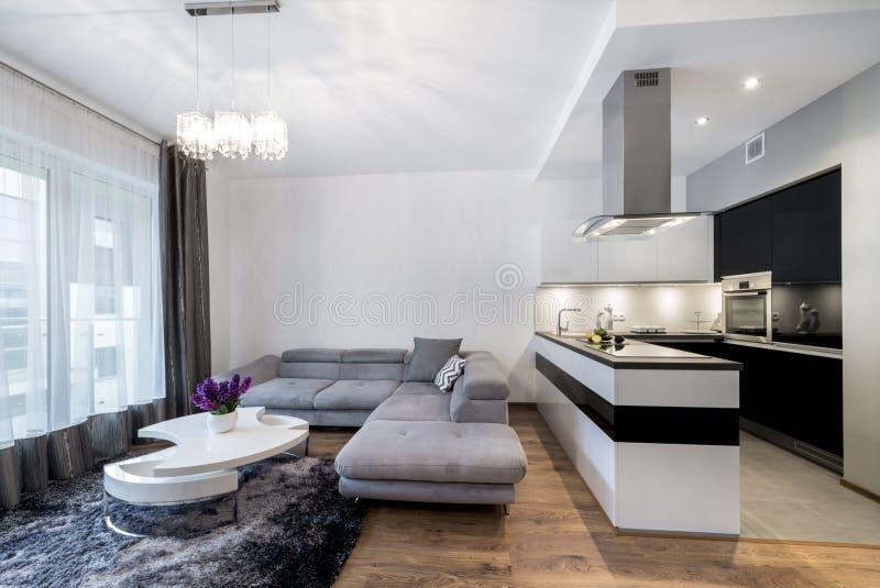 Küche und Wohnbereich im Luxushaus lizenzfreie stockbilder