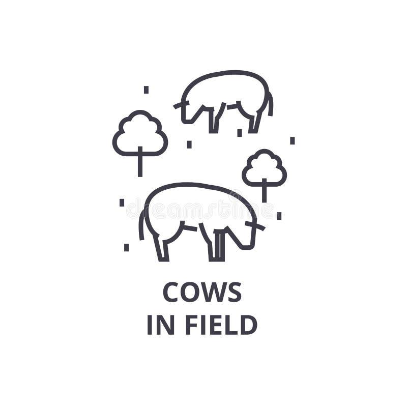 Kühe in der Feldlinie Ikone, Entwurfszeichen, lineares Symbol, Vektor, flache Illustration lizenzfreie abbildung