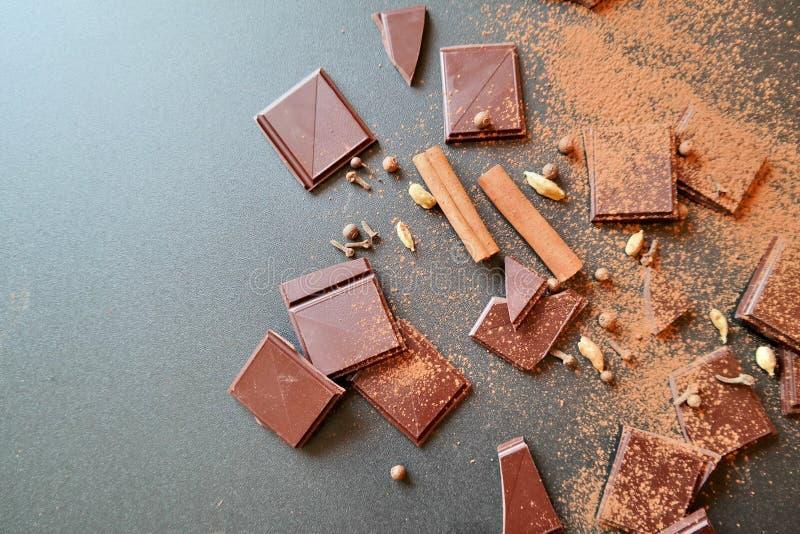 Kühle Schokoladenanlage stockfotos