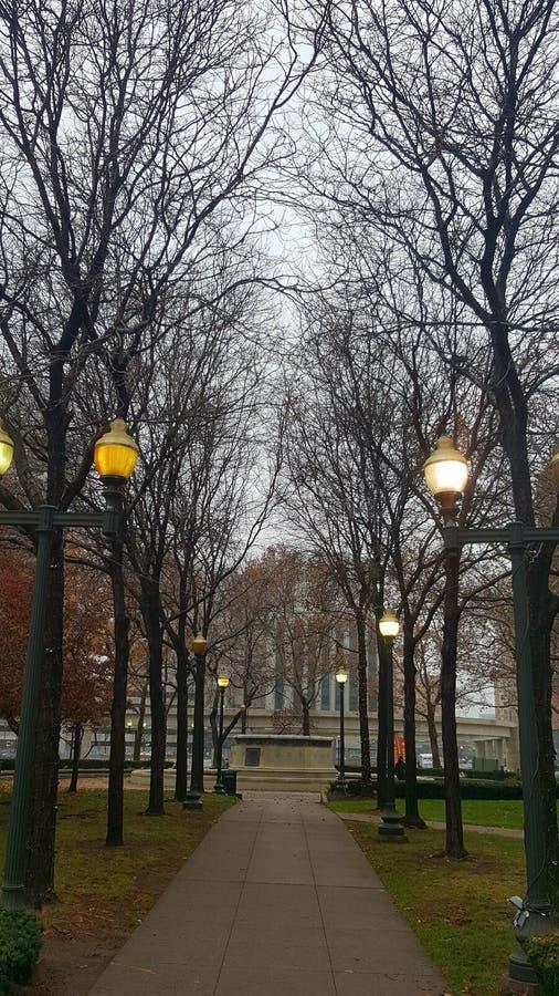 Kühlen Sie Fallweg auf einem nebelhaften November-Morgen ab stockfotos