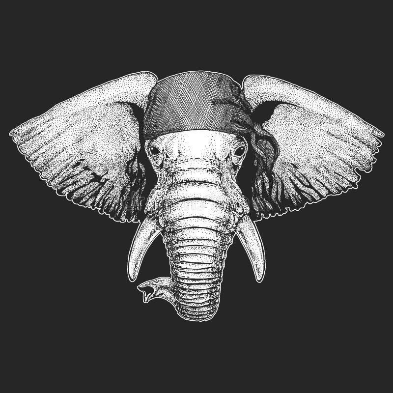 Kühler Pirat des afrikanischen oder indischen Elefanten, Matrose, seawolf, Seemann, Radfahrertier für Tätowierung, T-Shirt, Emble stock abbildung