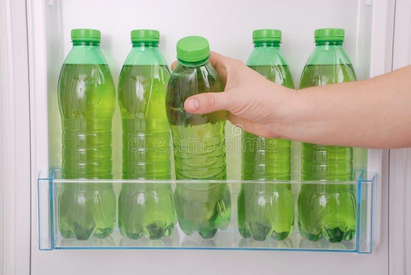 Kühles Kräutergetränk in der Plastikflasche lizenzfreies stockbild